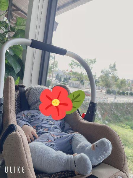 Ghế ngồi oto cho bé Zaracos MOREL 2636 – BROWN